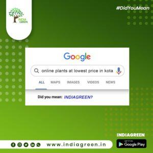 UrbanFilters - IndiaGreen 9
